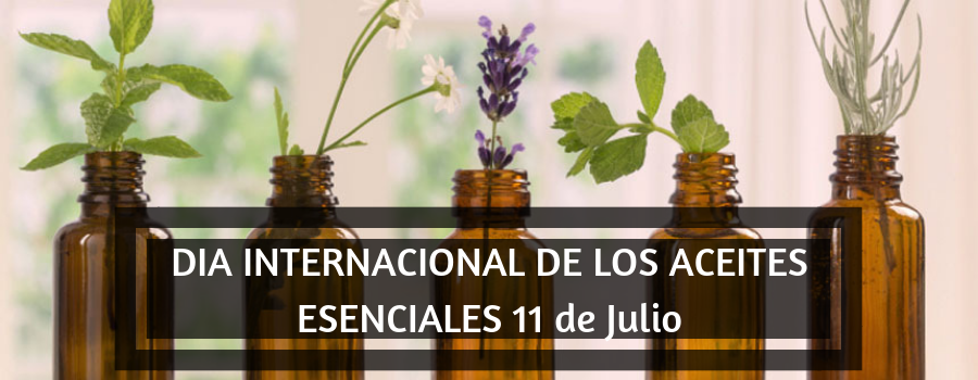DIA INTERNACIONAL DE LOS ACEITES ESENCIALES 11 de Julio