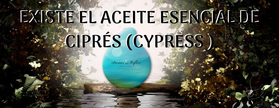EXISTE EL ACEITE ESENCIAL DE CIPRÉS